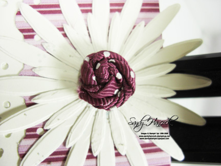 RazzleDaisyRibbon