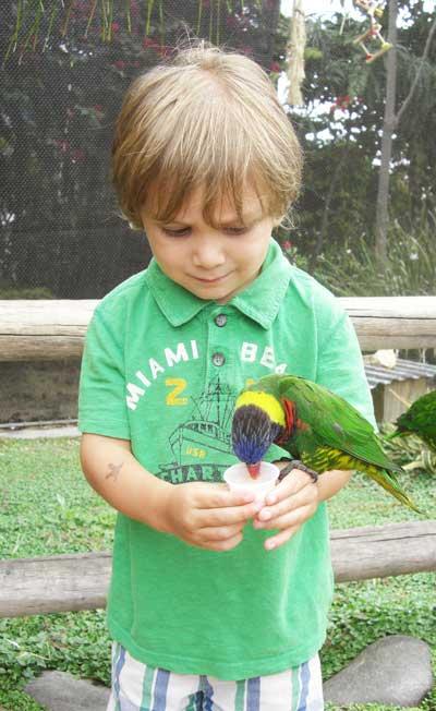 LBJerbirds