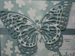 Butterflyupclose