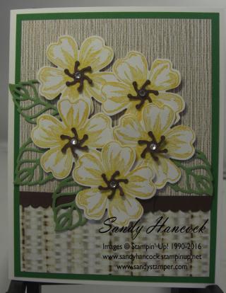 SereneSceneryflowers