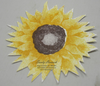 Sunflowerpointed