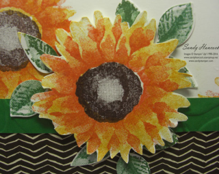 Sunflowerrounded