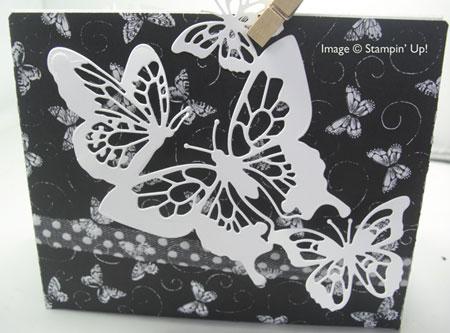 ButterflyBeautyWhiteButterf