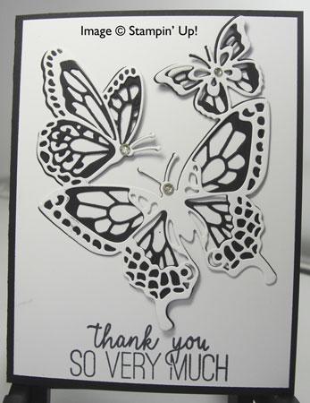 ButterflyBeautyBlWh