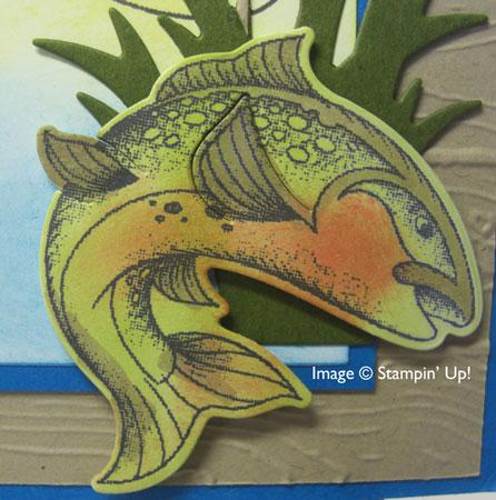 UACathyWilsonFish